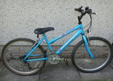 "Girls Raleigh "" Global "" bike for sale. SW18"