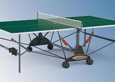 Table Tennis Table Seeks New Home