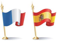 Spanish and  French Tuition