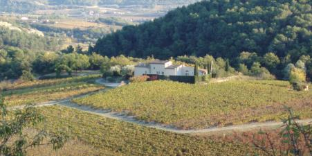 Villa in the vineyards: available 1 - 8 July