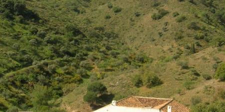 Holiday rental: Estate in hills above Malaga